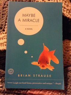 Maybe A Miracle-Brian Strause