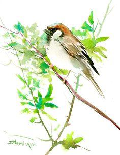 Sparrow watercolor painting, 10 X 8 in, birds, bird art, bird painting $28.00