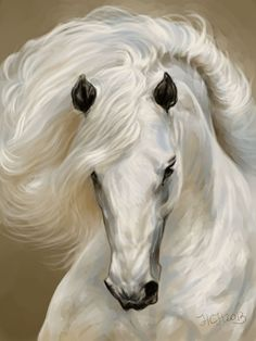 Art by Naumovich S. drawn in SAI, simply beautiful artwork! Pretty Horses, Horse Love, Beautiful Horses, Animals Beautiful, Simply Beautiful, Horse Drawings, Animal Drawings, Horse Artwork, Horse Paintings