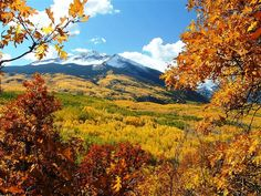 11 best places to see fall colors.  It's that time of year again. We're deep in the heart of leaf-peeping season and the leaves, they are a-changin'. Whether you're a fall foliage fanatic or just in the mood for a scenic drive — or train ride — through the fabulous fall scenery, you won't want to miss these great seasonal spots.