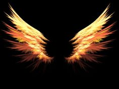 47 Ideas Tattoo Dragon Phoenix Wings For 2019 Wings Wallpaper, Angel Wallpaper, Angel Wings Drawing, Phoenix Wings, Wings Png, Daughter Of Smoke And Bone, Love Background Images, Fire Tattoo, Picsart Background