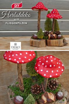 DIY: make pretty autumn decorations with toadstools - With autumn mushrooms made of modeling clay, you can easily make beautiful autumn decorations yours - Shell Decorations, Garden Party Decorations, Autumn Decorations, Diy And Crafts, Crafts For Kids, Easter Story, Autumn Crafts, Summer Diy, Decorating Blogs