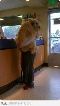 at the vet...