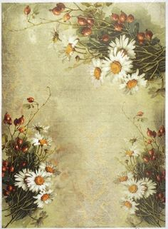 Rice Paper for Decoupage Scrapbook Craft Sheet Daisies & Rose Hips Wallpaper