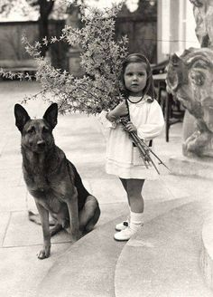 Helga Goebbels and Adolf Hitlers' dog. She was killed by her parents in the Berlin bunker as the Nazi empire crumbled.