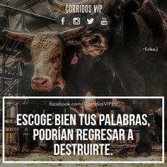 Escógelas bien ____________________ #teamcorridosvip #corridosvip #quotes #frasesvip