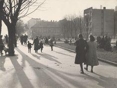 Na dunajskom nábreží Ladislav Roller 1940 po Bratislava, Street View, Scene, Google, Vintage, Vintage Comics, Stage