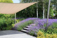 The Secret Garden, Creative Landscape, Weekend House, Celebrity Travel, Outdoor Landscaping, Garden Inspiration, Garden Design, Pergola, Sidewalk