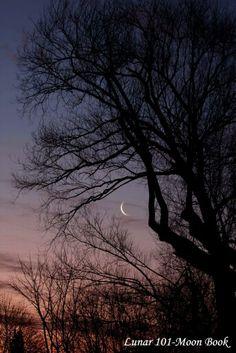 Moon Love Moon, Celestial, Sunset, Outdoor, Outdoors, Sunsets, Outdoor Games, The Great Outdoors, The Sunset