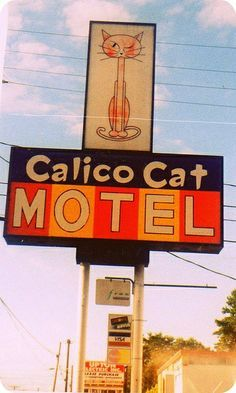 Calico Cat Motel Tacoma WA, does this remind anyone else of a hotel Sam or Dean from Supernatural would stay in?