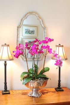 Decorating with Orchids...tips to creating a designer look