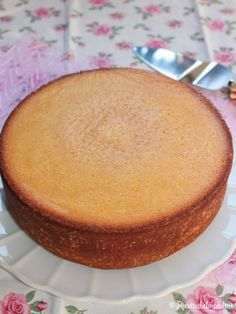 Molly cake, torta americana utilizzata come base, adatta per essere farcita
