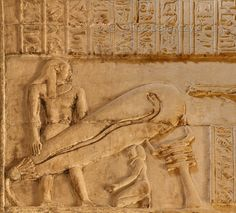 [EGYPT 29512]<br /> 'Creation of the cosmos in Dendera's Isis Temple.'<br /> <br /> Some of the most famous images from the temple at Dendera portray human figures next to bulb-like objects reminiscent of oversized light bulbs. This one is located on a interior wall of Dendera's Isis Temple, which is a separate building located south of the main Hathor Temple. Similar images can be found in the crypt beneath the southern wall of the Hathor Temple.<br /> What we witness here is the creation…