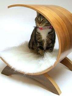 Circular Bed from Skymall