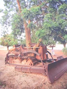 The bulldozer has been abandoned for so long the tree has grown up through it! Antique Tractors, Old Tractors, Old Farm Equipment, Heavy Equipment, Abandoned Cars, Abandoned Places, Caterpillar Bulldozer, Crawler Tractor, Work Horses