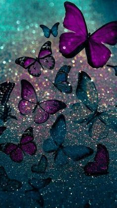 Cute Purple Butterfly Wallpapers : Also For Mobile And