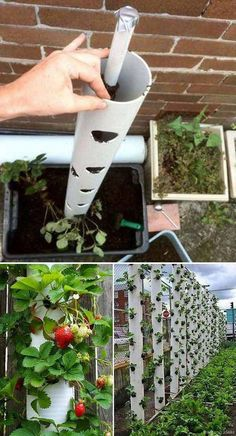 14 Genius Small Garden Design Ideas With all the environmentally friendly and. 14 Genius Small Garden Design Ideas With all the environmentally friendly and sustainable lifest