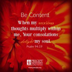 Let the grace of God calm your anxious spirit. http://store.precept.org/Fatal-Distractions-Conquering-Destructive-Temptations-40-Minute-Study.html #becontent #preceptministries #nostress
