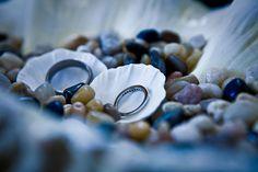 Seashell as #ring pillow for ring bearer #nozza #lmu #loyalmarymount