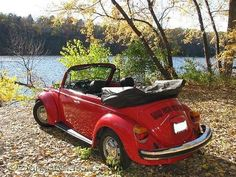 Just a perfect Fall day down by the river with a classic VW Beetle. Top down, sun out - camera ready! Take a look at the photo shoot and video of this fine 1978 VW Beetle Convertible. Volkswagen Bus, Vw Coccinelle Cabriolet, My Dream Car, Dream Cars, Carros Vw, Vw Cabrio, Auto Girls, Vw Beetle Convertible, Vw Camping