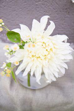 Dahlias Wedding Flowers Bouquets