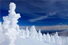 蔵王の「スノーモンスター」と呼ばれる樹氷。骨組みとなる樹の面影を残す彼らは、神秘的な雰囲気を漂わせ、ただそこにじっと佇む。