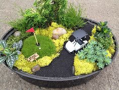 mini gardens more than just fairies, crafts, flowers, gardening