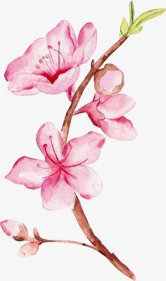 Pencil Art Drawings, Art Drawings Sketches, Watercolor Flowers, Watercolor Paintings, Watercolour, Flower Sketches, Flower Wallpaper, Beautiful Artwork, Flower Art