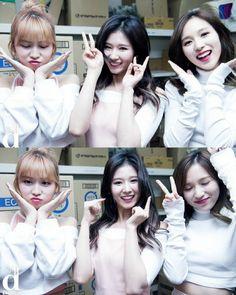 Momo, Sana & Mina
