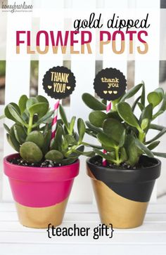 gold dipped flower pots- teacher gift idea!