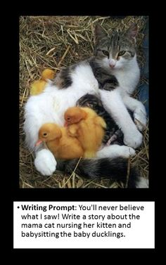 writing prompt: cause and effect -- an unusual situation