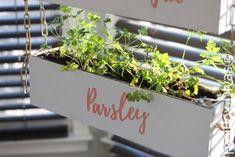 Indoor Vertical Herb Garden - ToolBox Divas