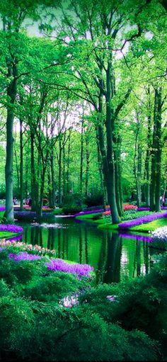 Keukenhof flower garden in Lisse, Netherlands • photo: caithness155 on deviantart