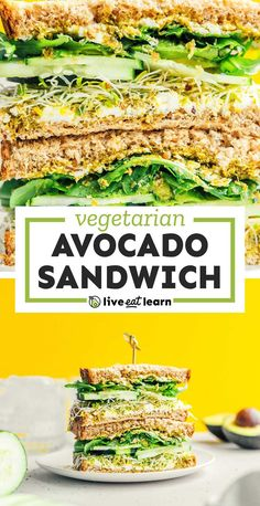 Give your body all of the greens with this Avocado Sandwich. It's made with cucumbers, sprouts, pesto, and goat cheese for maximum flavor and heartiness. It's a healthy vegetarian lunch that's perfect for meal prepping, picnics, or family lunch! Avocado Sandwich Recipes, Vegetarian Sandwich Recipes, Veggie Sandwich, Vegetarian Lunch, Vegan Dinner Recipes, Vegan Dinners, Lunch Recipes, Healthy Recipes, Vegetarian Thanksgiving
