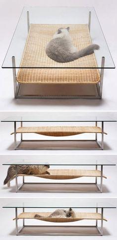 Kitty's coffee table! @Jenn L Milsaps L Milsaps L Milsaps L Milsaps L Posadas lol