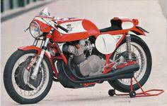 Cafe Racer MV AGUSTA