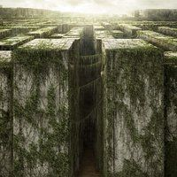 <a href='/title/tt1790864/?ref_=m_ttmi_mi_tt'>The Maze Runner</a> (2014)