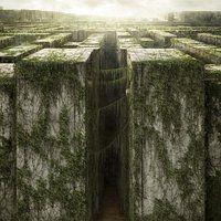 <a href='/title/tt1790864/?ref_=m_ttmi_mi_tt'>The Maze Runner</a> (2014)