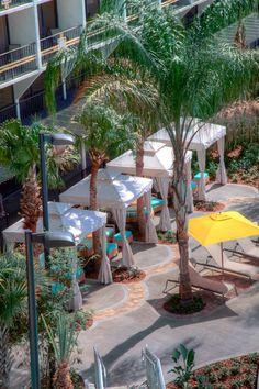 Poolside Cabanas, Sheraton Lake Buena Vista Resort, Orlando Hotels