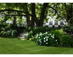 Like this pretty yard  Green & White http://lucywilliamsinteriordesign.blogspot.com/