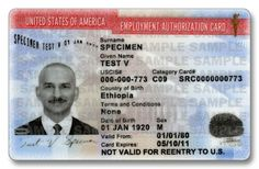 DHS Soliciting Bids For Up To 34 Million ID Cards for Illegals The cat is out of the bag. Just because Obama has delayed any executive actions on amnesty until after the mid-term elections, it does not mean that amnesty is not going to happen. Earlier this month the Department of Homeland … Continue reading →