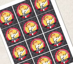 Karate Birthday Party Cupcake Toppers