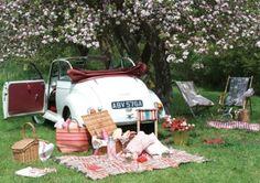 Día de picnic
