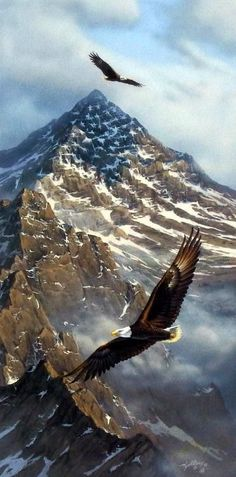 Flying free and high these bald eagles look amazing with these mountains, which look as though the American Flag is presented with the snow, behind them..