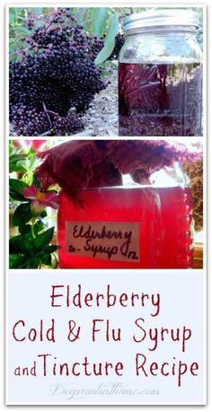 Elderberry Cold & Flu Syrup and Tincture Recipe Herbal Tinctures Cold Remedies Fast, Cold And Cough Remedies, Natural Cold Remedies, Flu Remedies, Herbal Remedies, Home Remedies, Holistic Remedies, Elderberry Recipes, Elderberry Syrup