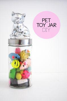 Pet Toy Jar DIY