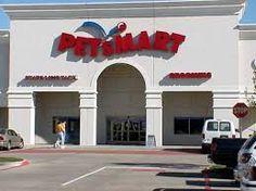 pet shop store - Buscar con Google