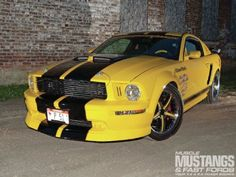 2006 Mustang GT: Mustang Mimics Mustang -- When it comes to high-performance machinery, the North American fighter ranks at the top of the heap. 2006 Mustang Gt, P51 Mustang, Ford Mustangs, Yellow Car, Car Mods, Pony Car, Ford Motor Company, Old Trucks, My Ride