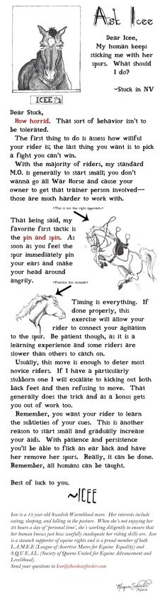 The Idea of Order offers up weekly pony ridiculousness.  How a horse approaches training their rider.  Truth.