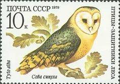 Znaczek: Barn owl (Tyto alba) (ZSRR) (Birds) Mi:SU 4886,Yt:SU 4630